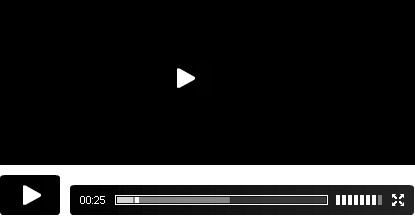flash video player wordpress
